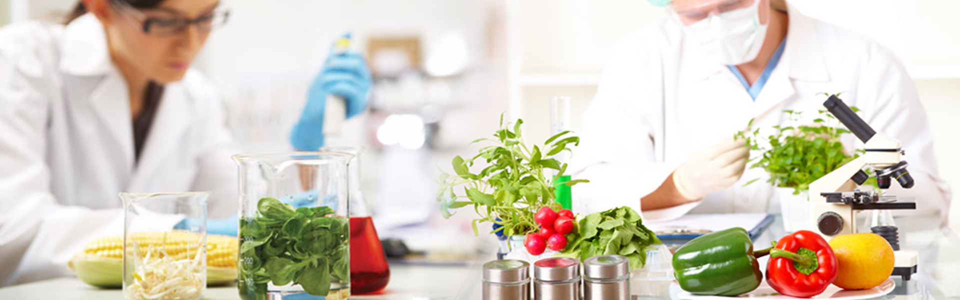 Free Online Course In Food Regulatory Affairs