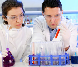 Two scientists working at the chemical laboratory.