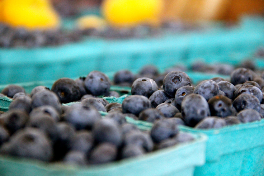 Professionals with nutrition and health training know blueberries have anti-oxidants