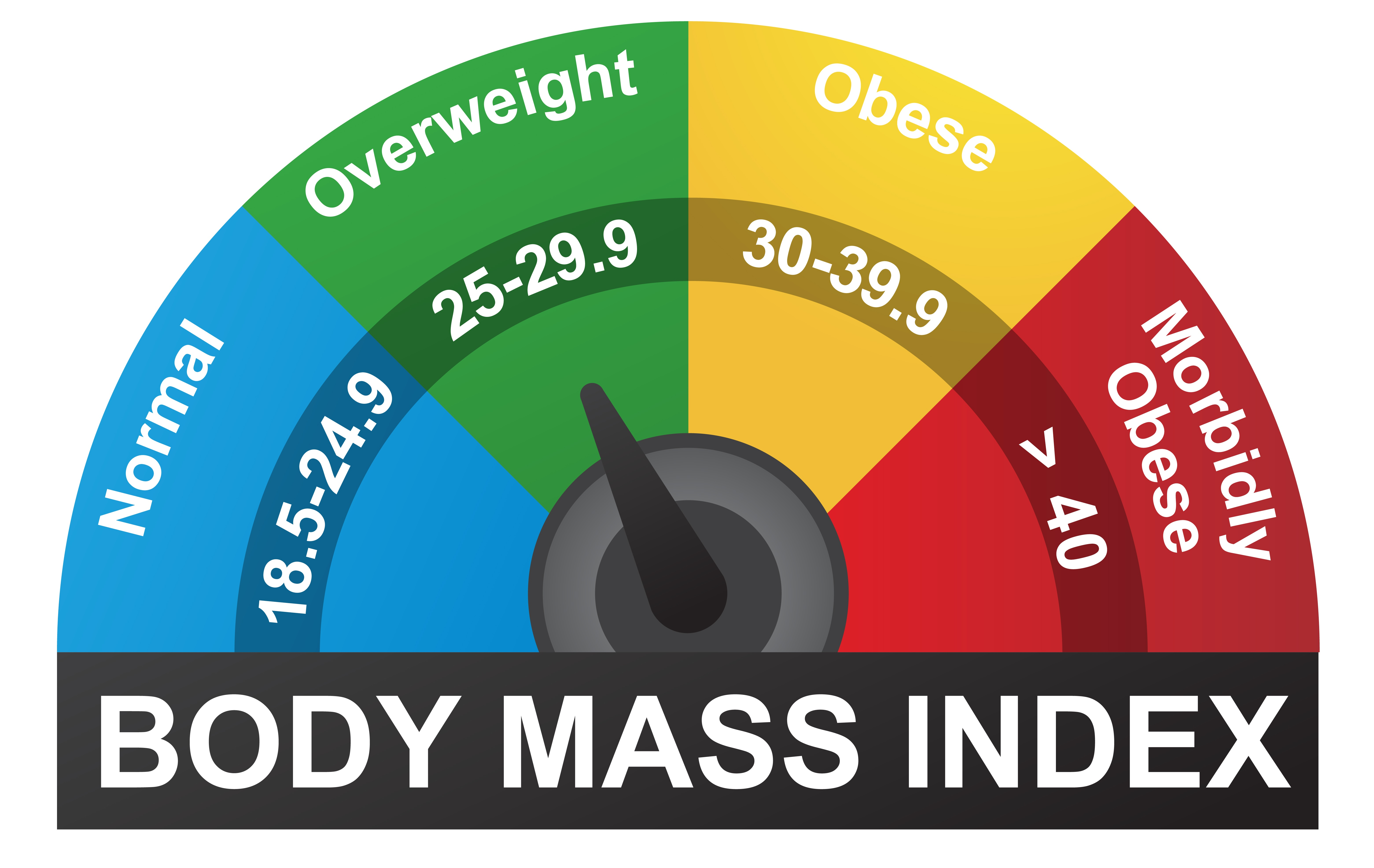 The BMI uses a rating scale to determine obesity levels