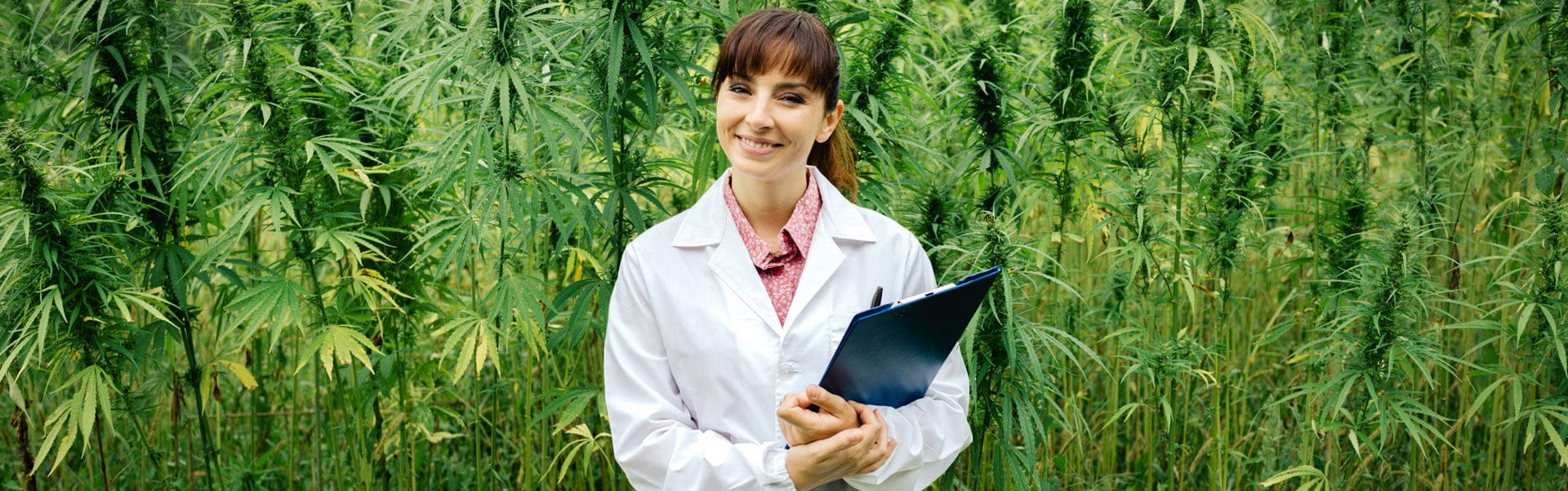 Cannabis – Management, Quality & Laboratory