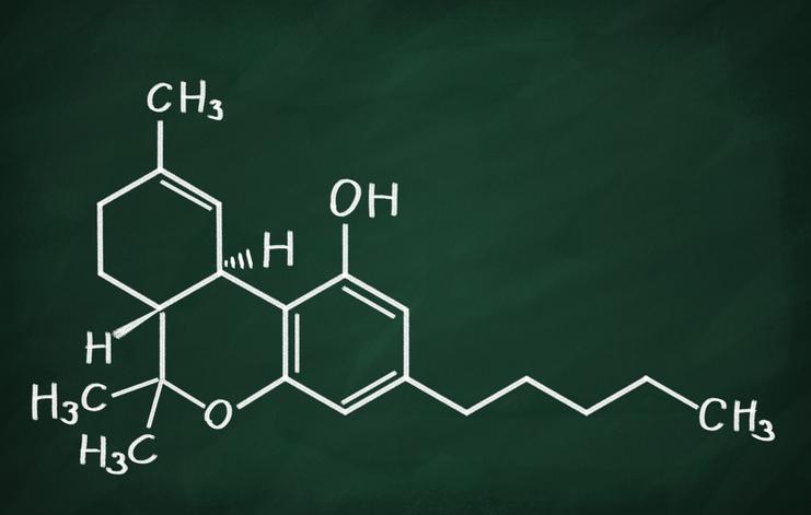 marijuana for medical purposes