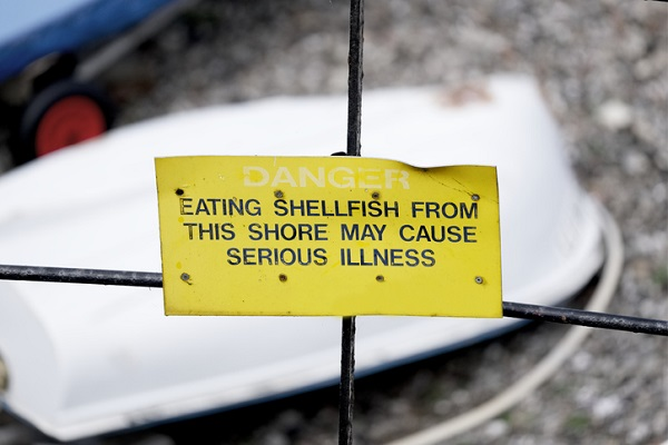 """Intoxication from shellfish occurs more during """"red tide"""" algae blooms"""