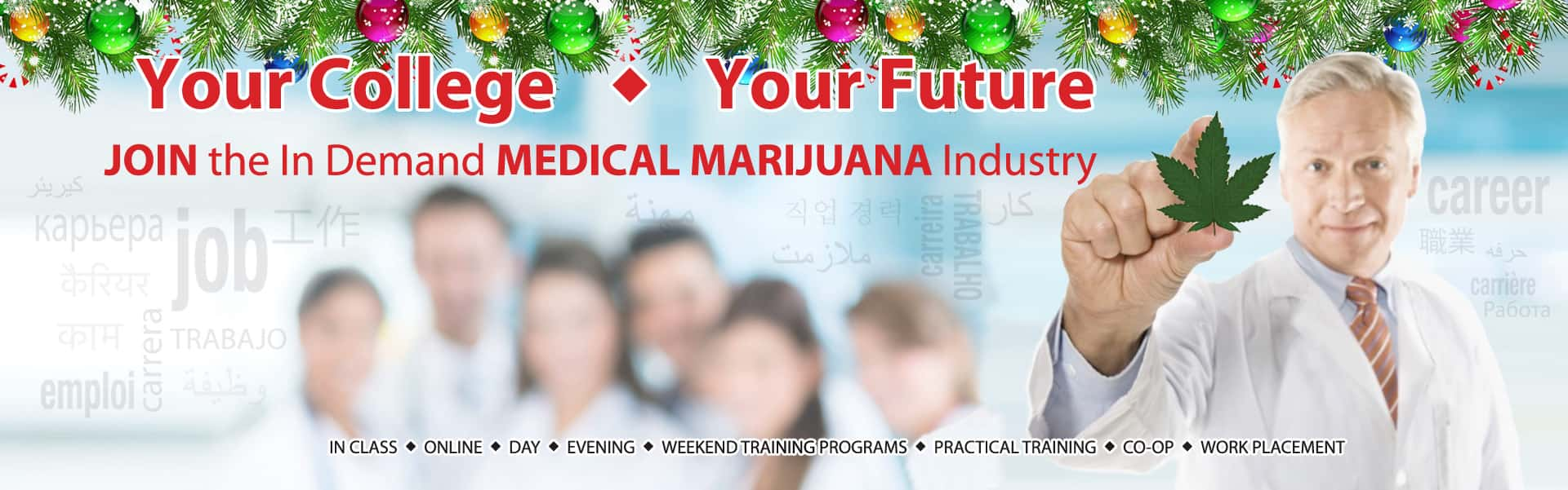 Your-college-clinical-main-christmas 3