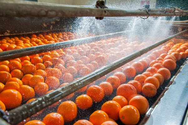 At AAPS, you'll learn about food product development, food chemistry, and food processing