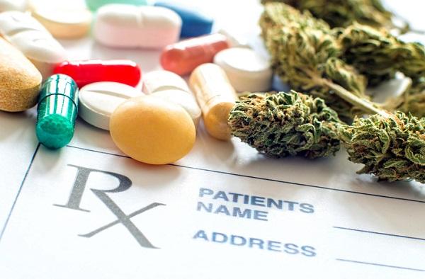 medical marijuana certification training